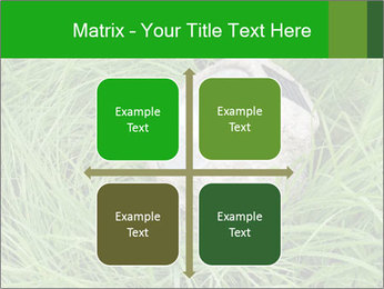 0000075424 PowerPoint Template - Slide 37