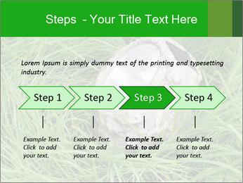 0000075424 PowerPoint Template - Slide 4