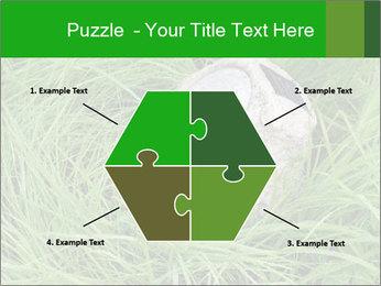 0000075424 PowerPoint Template - Slide 40