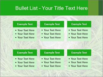 0000075424 PowerPoint Template - Slide 56