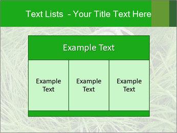 0000075424 PowerPoint Template - Slide 59