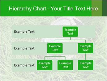 0000075424 PowerPoint Template - Slide 67