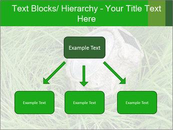 0000075424 PowerPoint Template - Slide 69