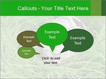 0000075424 PowerPoint Template - Slide 73
