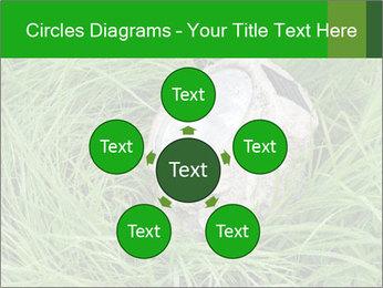 0000075424 PowerPoint Template - Slide 78