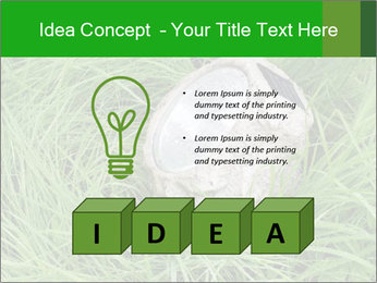 0000075424 PowerPoint Template - Slide 80