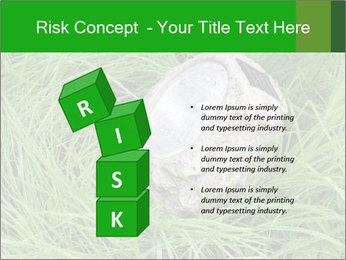 0000075424 PowerPoint Template - Slide 81