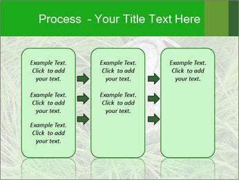 0000075424 PowerPoint Template - Slide 86