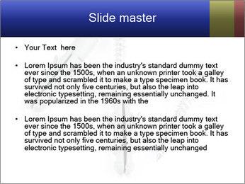 0000075437 PowerPoint Templates - Slide 2