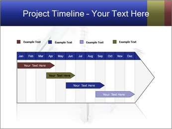0000075437 PowerPoint Templates - Slide 25