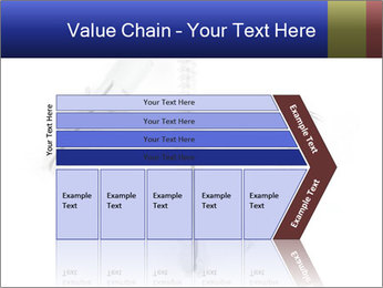 0000075437 PowerPoint Templates - Slide 27