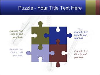 0000075437 PowerPoint Templates - Slide 43