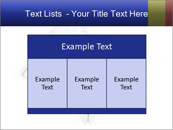 0000075437 PowerPoint Templates - Slide 59