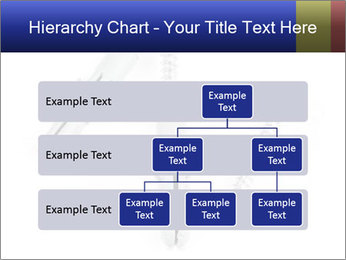 0000075437 PowerPoint Templates - Slide 67