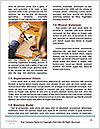 0000075449 Word Templates - Page 4