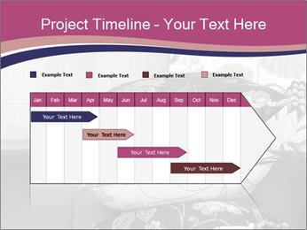 0000075451 PowerPoint Template - Slide 25