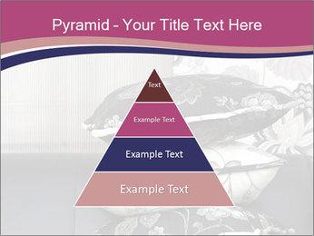 0000075451 PowerPoint Template - Slide 30