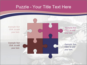 0000075451 PowerPoint Template - Slide 43