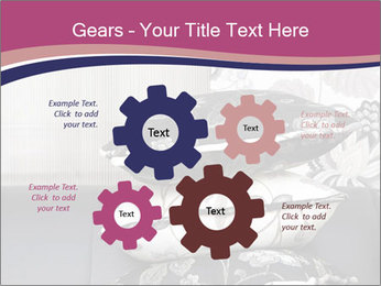 0000075451 PowerPoint Template - Slide 47