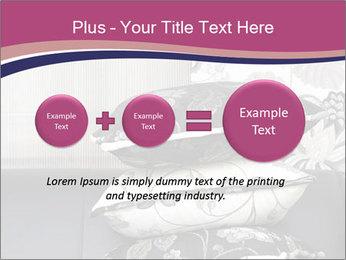 0000075451 PowerPoint Template - Slide 75
