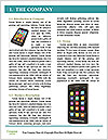 0000075453 Word Template - Page 3