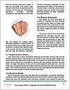 0000075455 Word Templates - Page 4