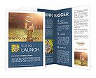 0000075459 Brochure Templates