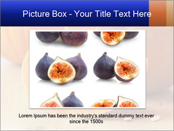 0000075460 PowerPoint Template - Slide 15