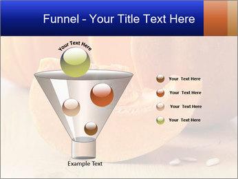0000075460 PowerPoint Templates - Slide 63