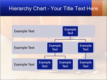 0000075460 PowerPoint Templates - Slide 67