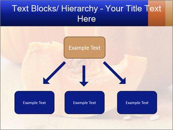 0000075460 PowerPoint Templates - Slide 69