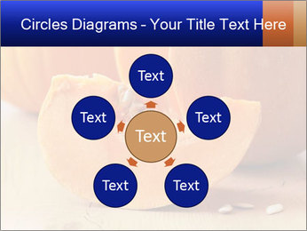 0000075460 PowerPoint Template - Slide 78