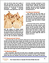 0000075460 Word Template - Page 4