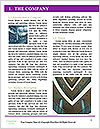 0000075463 Word Templates - Page 3