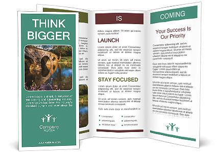 0000075465 Brochure Templates