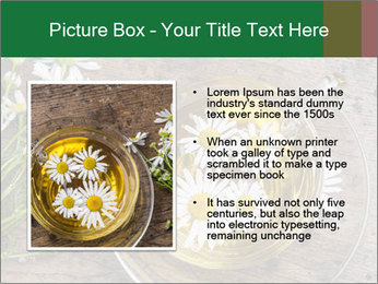 0000075466 PowerPoint Templates - Slide 13