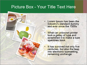 0000075466 PowerPoint Templates - Slide 17