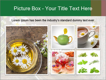 0000075466 PowerPoint Template - Slide 19