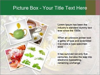 0000075466 PowerPoint Template - Slide 23