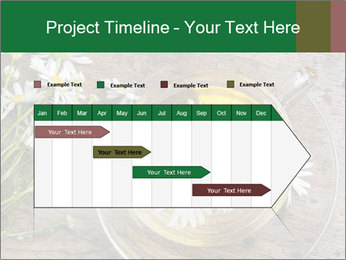 0000075466 PowerPoint Template - Slide 25