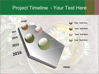 0000075466 PowerPoint Template - Slide 26