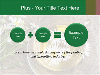 0000075466 PowerPoint Template - Slide 75