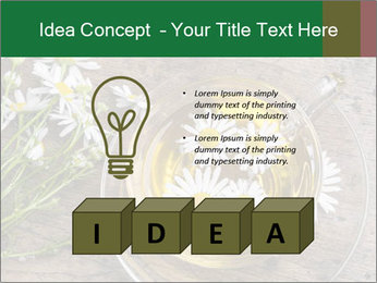 0000075466 PowerPoint Template - Slide 80