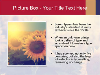 0000075467 PowerPoint Template - Slide 13