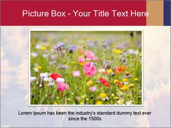 0000075467 PowerPoint Template - Slide 15