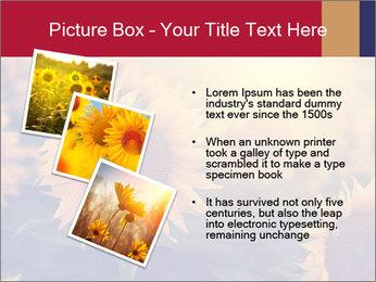 0000075467 PowerPoint Template - Slide 17
