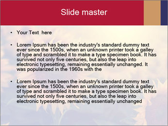 0000075467 PowerPoint Template - Slide 2