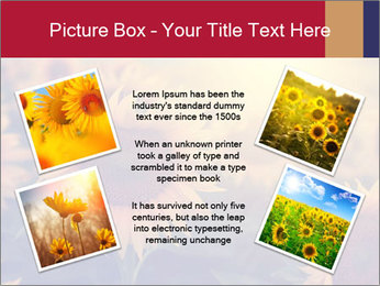 0000075467 PowerPoint Template - Slide 24