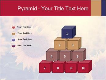 0000075467 PowerPoint Template - Slide 31