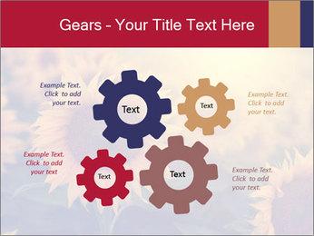 0000075467 PowerPoint Template - Slide 47